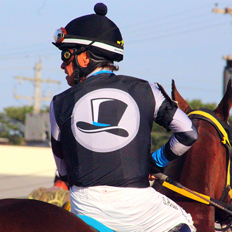 Picture of Top Hat Thoroughbreds