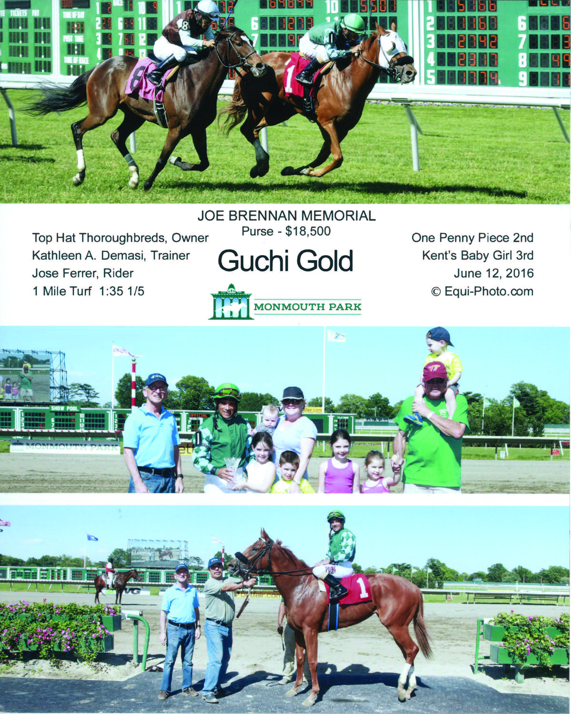 guichi gold