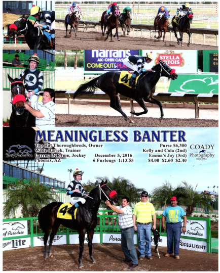 Meaningless Banter 20161205_TurfParadise_R4_WinnersCircle