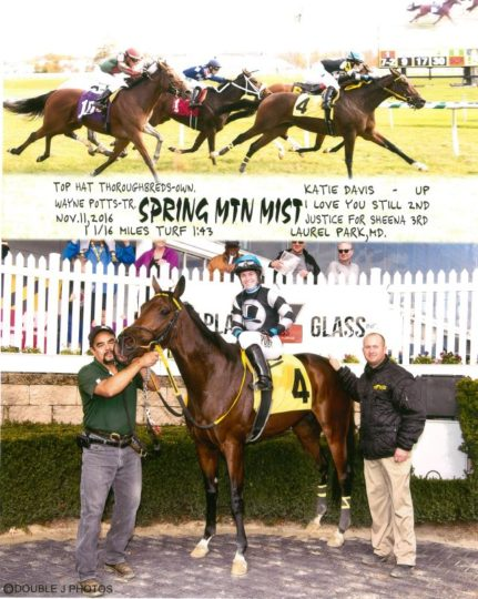 spring mtn mist 11-11-16