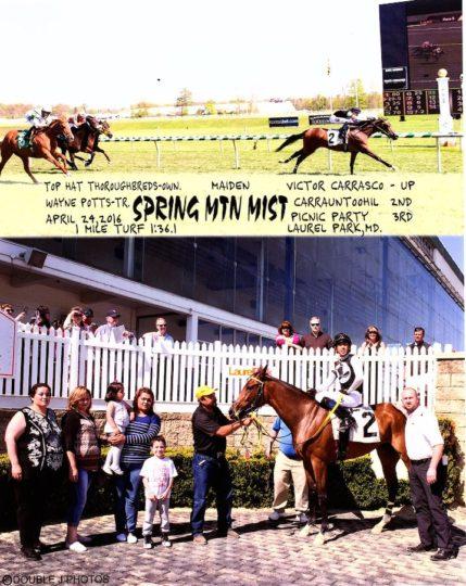 spring mtn mist 4-24-16