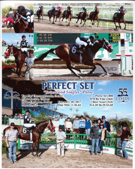 Perfect Set 20170220_TurfParadise_R5_WinnersCircle