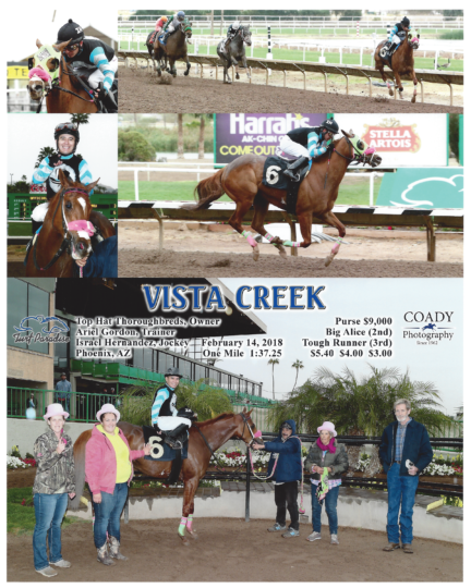 Vista Creek 20180214_TurfParadise_R3_WinnersCircle