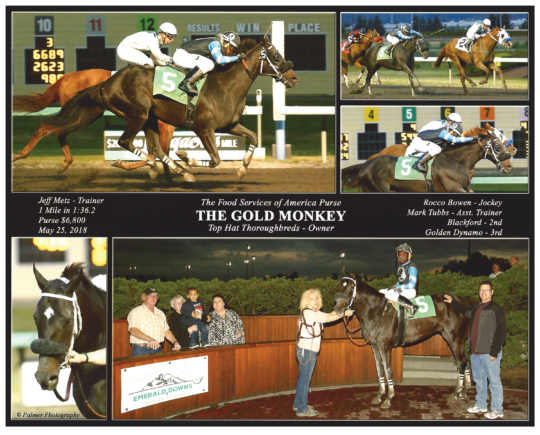 The Gold Monkey C2_20180525_EmeraldDowns_R5_WinnersCircle